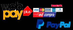 WebPay Logo PNG